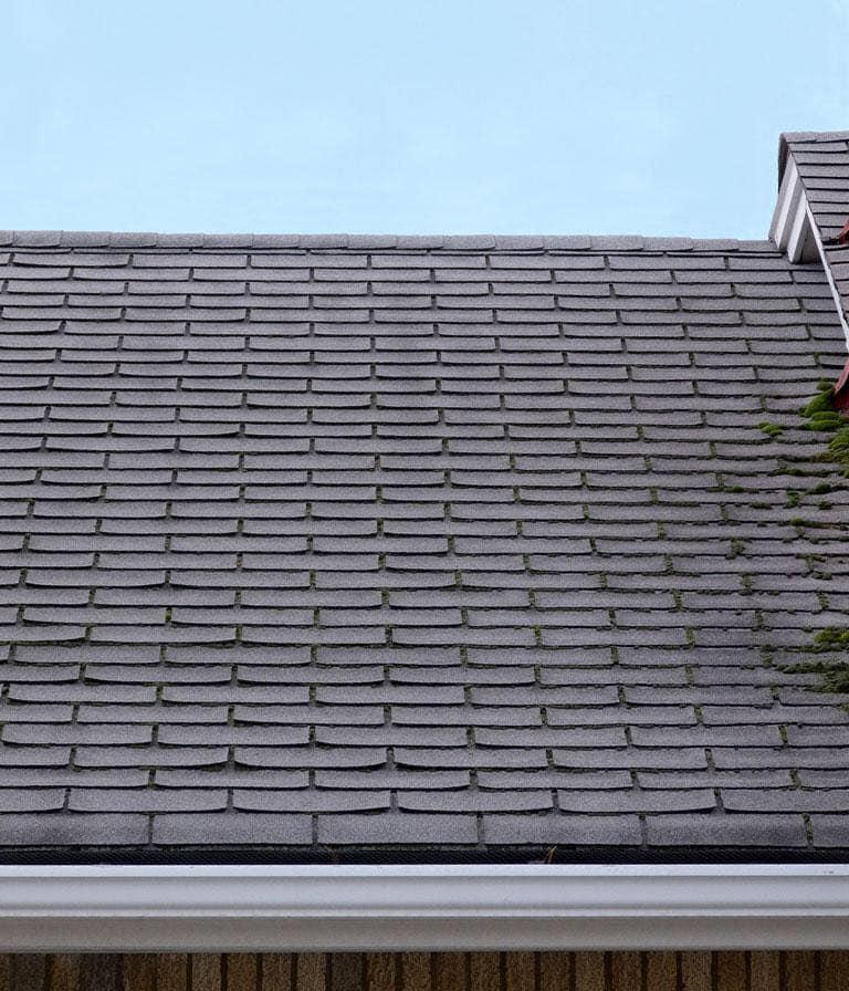 inspection de la toiture à l'automne