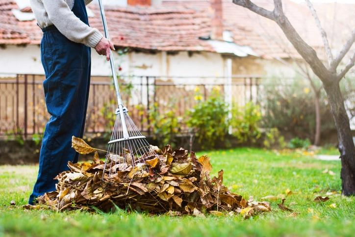 Voici donc quelques conseils pour vous aider à bien nettoyer sa toiture au printemps.